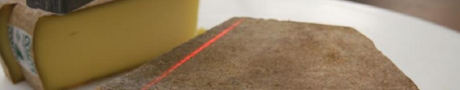 Robot de Coupe Agro-Alimentaire par Ultrason